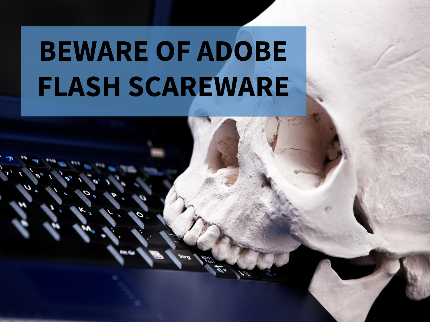 Beware of Adobe Flash Scareware