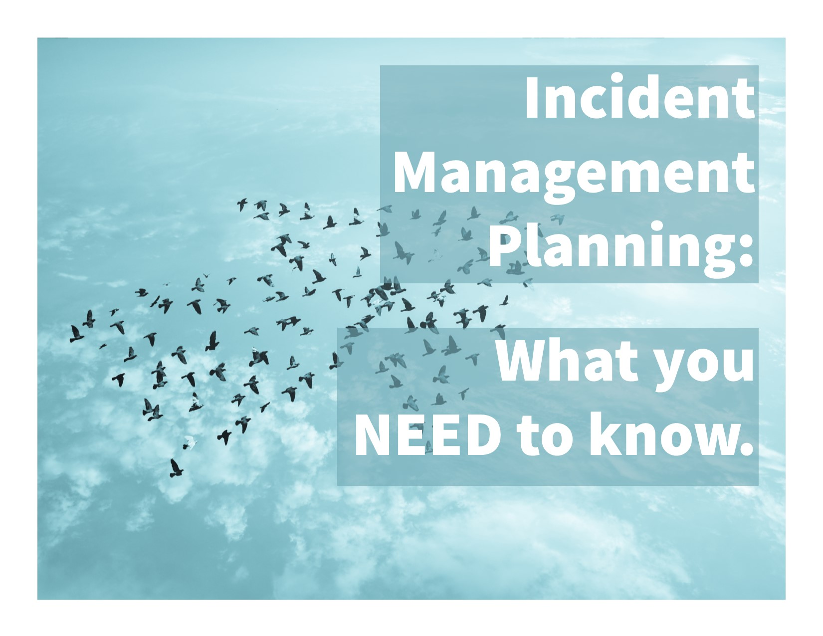 4 Steps to Make Your Incident Management Plan (IMP) Successful